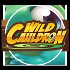 Spielen Sie Wild Cauldron Online Slot